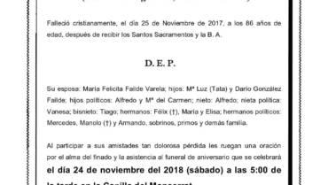 D. DARIO GONZÁLEZ AREÁN