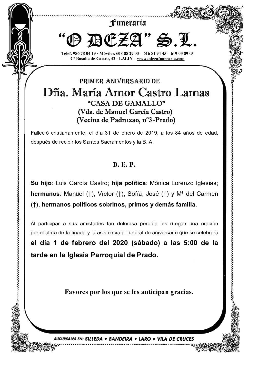 DÑA. Mª AMOR CASTRO LAMAS