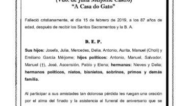 D. MANUEL GARCÍA CALVO